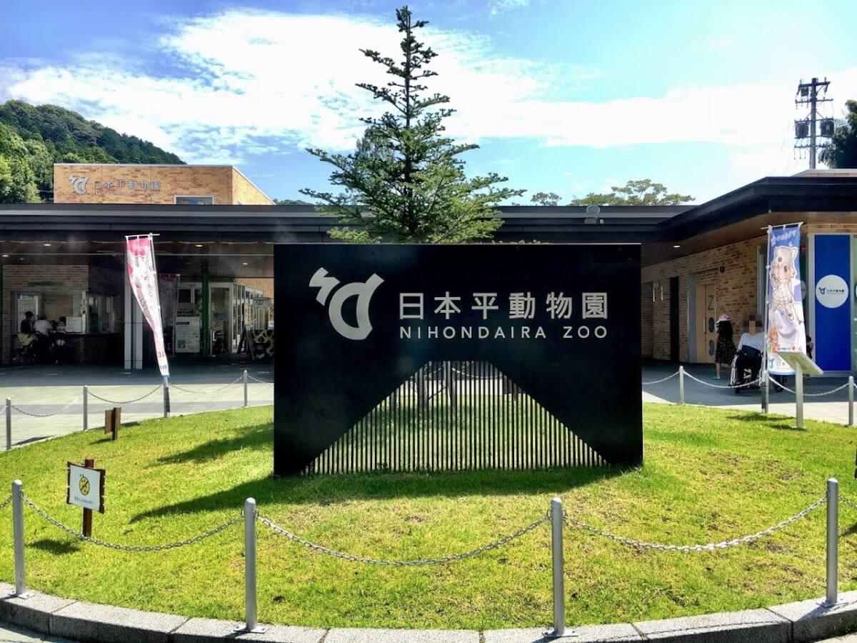 暑~い夏の終わりに日本平動物園へ行ってきた!